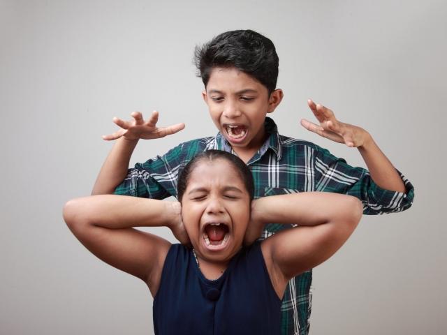 Sibling Interactions